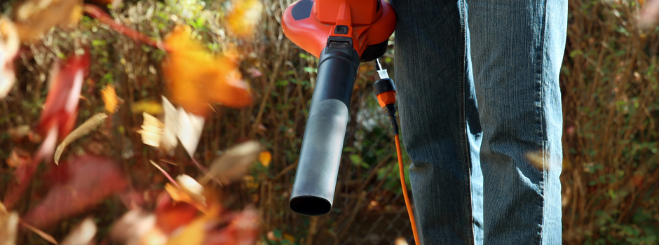 Leaf Blower Buying Guides